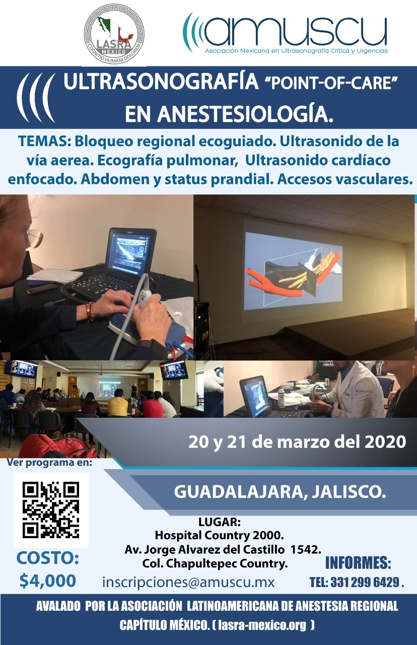 Ultrasonido point-of-care en anestesiologia